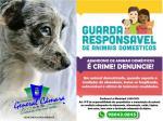 Abando de animais domésticos é crime.